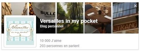 [Blogging] 10 000 J'aime pour Versailles in my pocket !